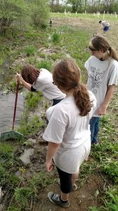 Sampling the Stream